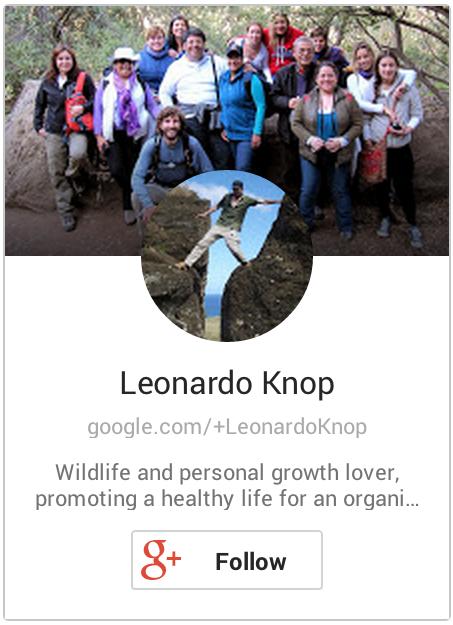 Leonardo Knop Google+